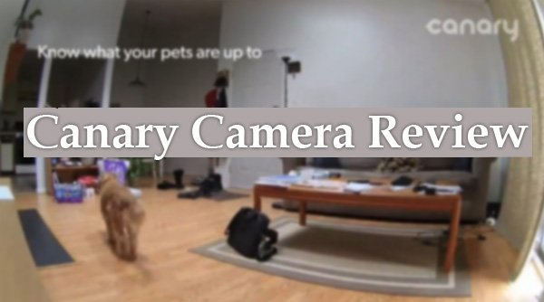 Featured image for article: Canary Camera Review