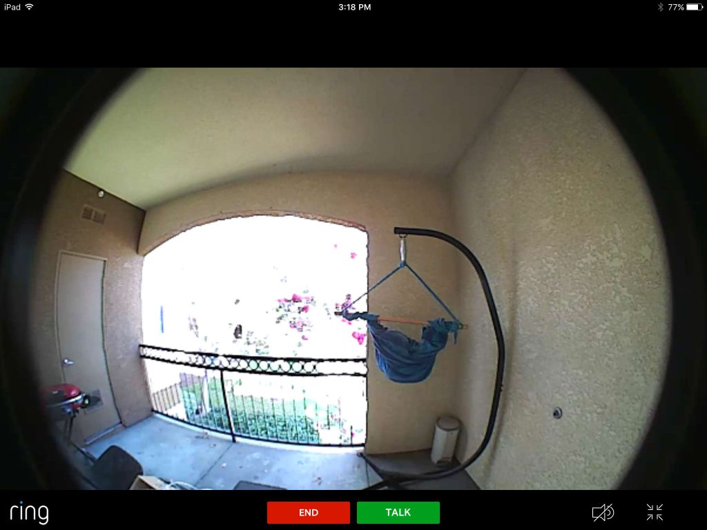 Ring doorbell video in day time
