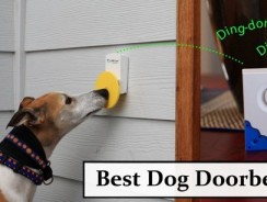 Best Dog Doorbells